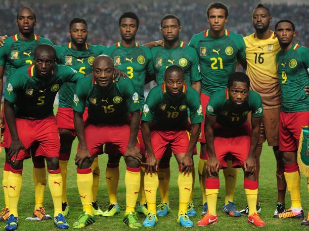 Los 11 leones.